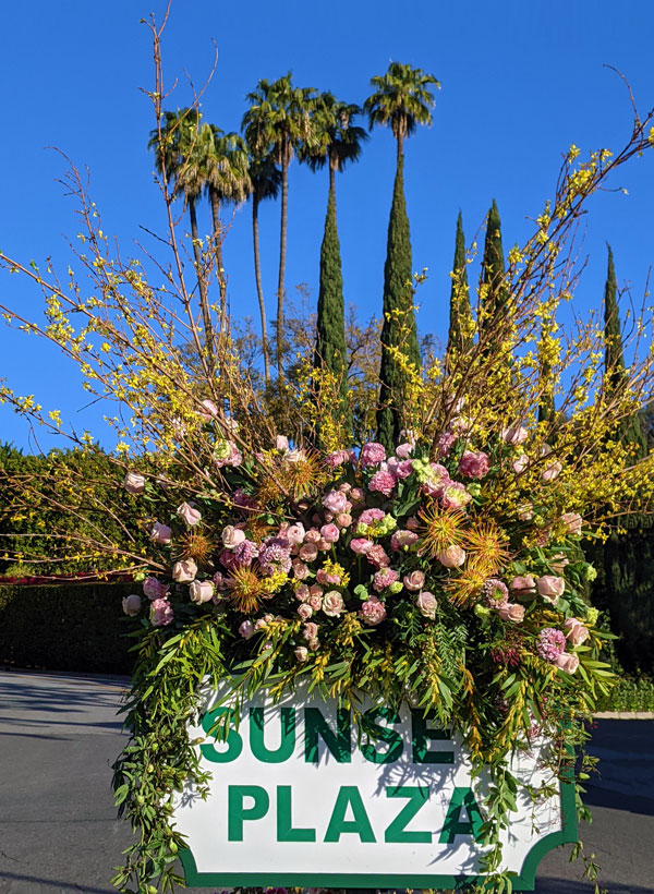 sunset-plaza-flowers